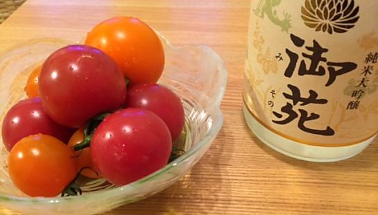 トマトいただきました